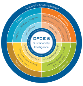 DFGE_solutions_explained_large